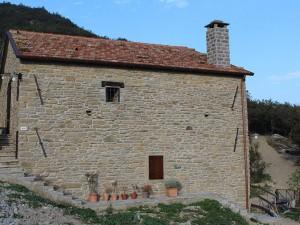 Farm holidays Torre delle Rose